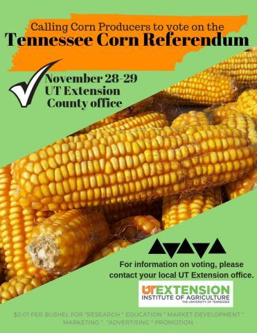 Corn Producers VOTE!