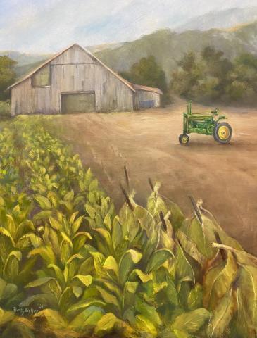A field of tobacco with a tractor and a barn.