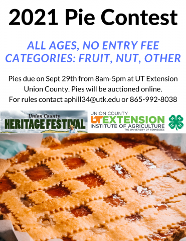 Picture of a pie for pie contest