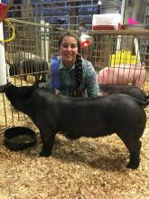 Hog Club member Abigail Foust at the state show