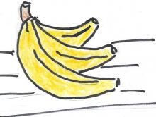 Hand drawen picture of bananas