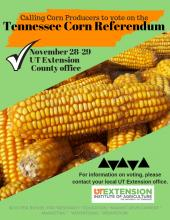 Corn Producers VOTE!