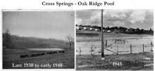 Oak Ridge Pool Cross Springs