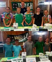 4-H at the Fair